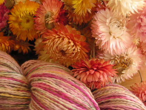 In Bloom in the new Silk Cashmere 2ply