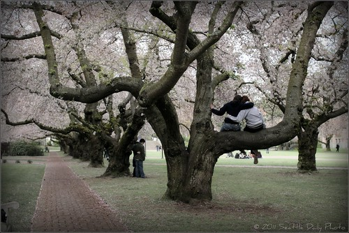 Springtime Rituals
