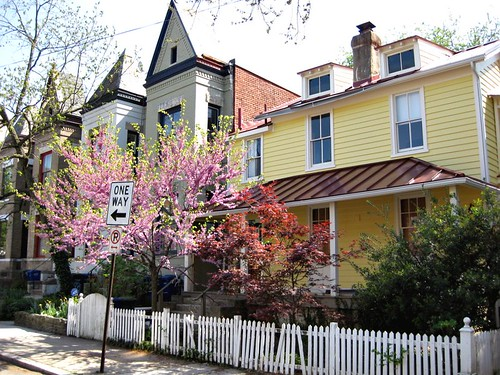DC's Mount Pleasant neighborhood (by: Elizabeth Thomsen, creative commons license)