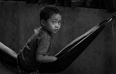 Kutchong (b) - Philippines 2017 (William Shropshire) Tags: philippines capiz iloilo dumarao