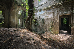 Rebirth... (ElfeMarie) Tags: villa palazzo ruine ruins vegetation architecture colors couleurs decay derelict decayed creepy forgotten fenetre window arbre tree feuillage foliage lost lumière light urbex marilynek italie italy italia
