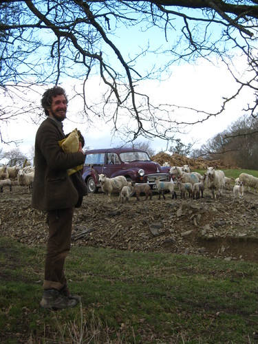 Ed and the herded morris