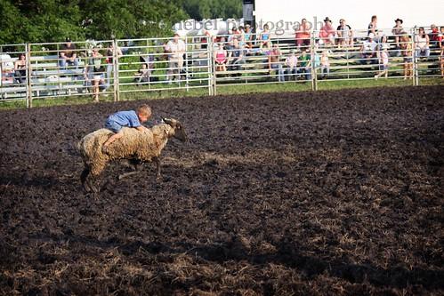41 . sandburr rodeo . trekfest in riverside .