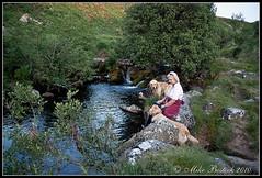River Taw - evening walk. (Fang-farrier) Tags: water landscape evening fuji retriever devon dartmoor belstone s5pro