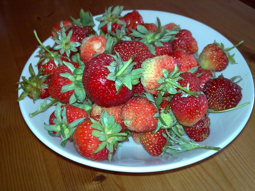 strawberries2010_01