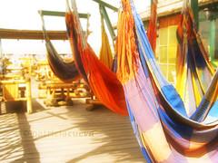 Hamacas (Patty Cueva ) Tags: sun color beach peru coln piura hamacas