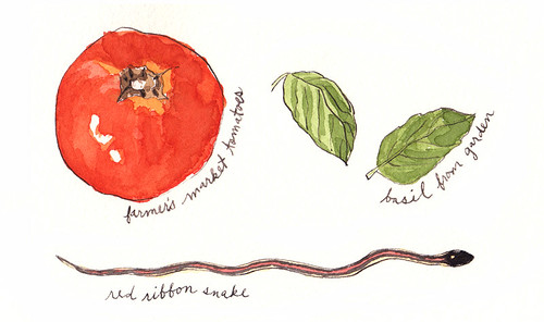 An illustrated summer: intro