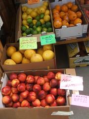 Nectarines and citrus