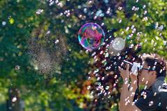 The Bubble Bursts (Mute*) Tags: camera toronto photographer bokeh battle bubble burst relfection bursting newmindspace