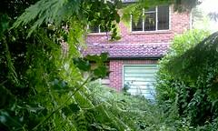 Awaiting its fate (paul_appleyard) Tags: house abandoned camberley surrey overgrown derelict bracken weeds ruin holly green brick garagedoor gordonroad 98 gordon road surreyheath