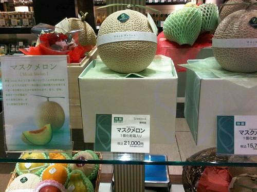 Musk Melon6