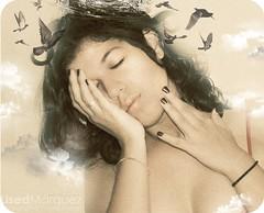 The Phenix have nest on me... (*La Marqueza* www.lisedmarquez.com) Tags: self retrato autoretrato bodylanguage aves fenix fotografo maracaibo selfportrate lised lisedmarquez maracaibophoto