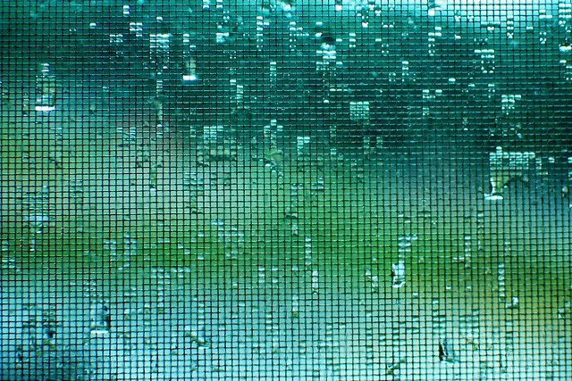A window screen on a rainy day.