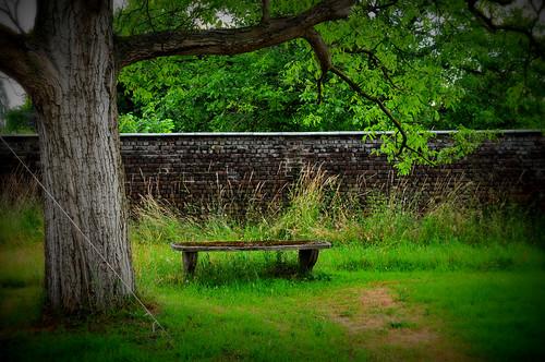 idyllic garden by vie!