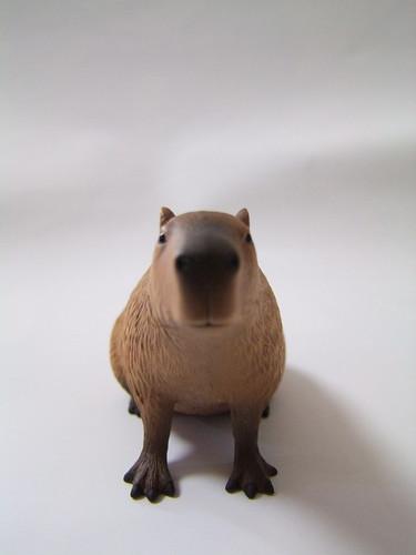 ドキドキどうぶつシリーズ カピバラ(座り)/Dokidoki Animal Series Capybara