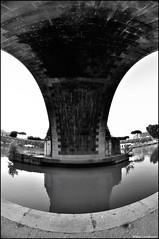 _DSC7241 ( Marco Carotenuto ) Tags: bridge italy rome roma architecture photo google search nikon flickr italia foto album fiume centro fisheye tevere marco fav favourite 8mm favorita architettura lazio storico ponti preferita regione samyang carotenuto d300s nikonutentiromani