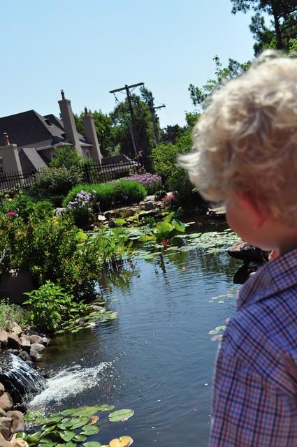 Linnaeus Teaching Gardens