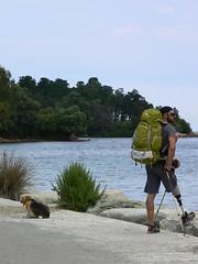 Corsica (Roby-da-matti) Tags: trip travel dog mountains beagle nature cane montagne trekking walking hiking corse gr20 corsica culture natura viaggio cultura nessie disabili arto camminare protesi impresa camminata camminando disabile robertobruzzone robydamatti