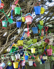 The Lost Bucket & Spade Tree (Matt West) Tags: color colour tree abandoned lost seaside bucket holidays space forgotten lulworth