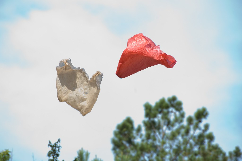 Plastic Bag / Ramin Bahrani