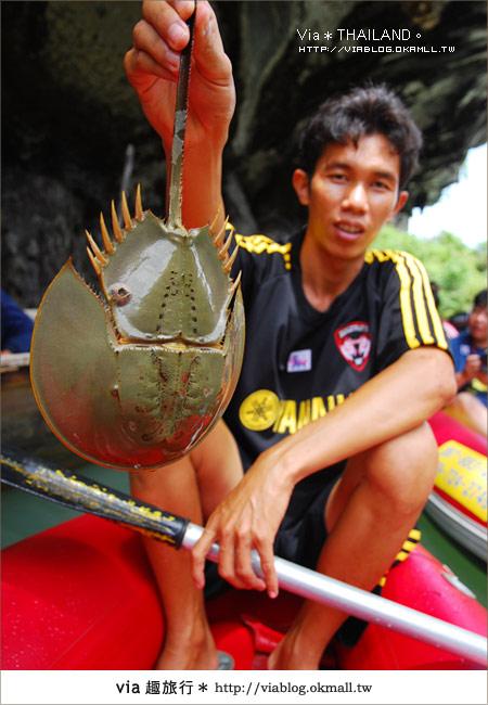【泰國旅遊】2010‧泰輕鬆~Via帶你玩泰國曼谷、普吉島!32