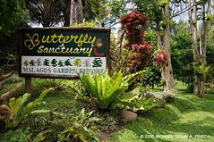 Malagos Garden Resort Davao