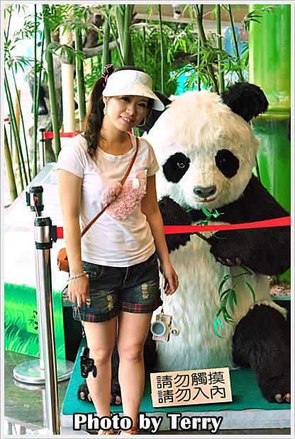 動物園 - (9)