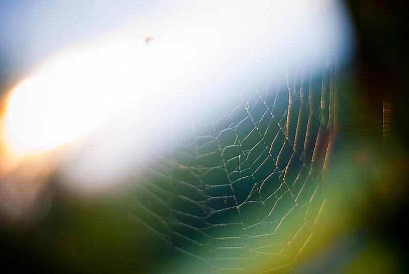 humidweb