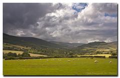 Irish Countryside, Co. Wicklow