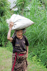 Old Lady and Her Rice (cwgoodroe) Tags: new old school summer bali sun stone kids children indonesia rice statues agriculture mountians patties riceterraces ubud seminyak batubulan