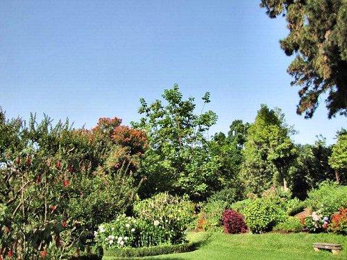 20100804-rq-14-jardim da senhora