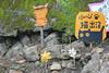 IMG_0468 (翔志) Tags: taiwan taipei 台灣 台北 貓 taipeicounty 台北縣 侯硐 houtong 猴硐 瑞芳鎮 貓村 catvillage rueifangtownship houtongcatstreet 百貓街