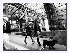 Catwalk runaways (seventyone12) Tags: street city summer blackandwhite bw dog reflection berlin station women highheels olympus ubahn sbahn zuiko leach ep1 1442mm