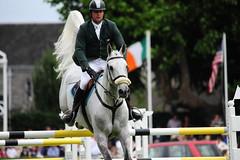 144 Valetto Jx QUIGLEY David IRL GD/8/SDWA/Grey/Cevin Z/Gabriella/Mr W Twomey (Stanthefan) Tags: horses dublin mare dam equestrian sire irl rds showjumping countydublin foal eventing republicofireland failteireland