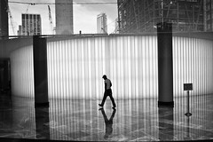 (Barry Yanowitz) Tags: nyc newyorkcity blackandwhite bw ny newyork reflection reflections blackwhite flickr downtown manhattan worldtradecenter wintergarden wtc worldfinancialcenter nycity