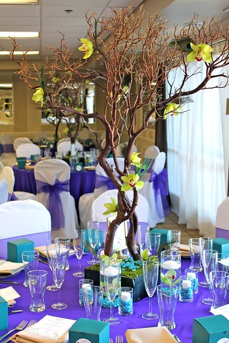 TALL Manzanita Branches for Sale wedding manzanita centerpiece floral