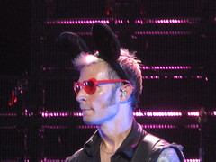 Green Day - Mike Dirnt (Peter Hutchins) Tags: live greenday 2010 billiejoearmstrong mikedirnt trécool americanidot