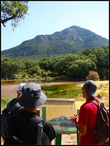 Laguna El Picacho