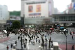 Shibuya crossing Tokyo ain't so big. (Marquisde) Tags: tilt shift mini miniature small model tiltshift fake tiltshiftmaker japan japanese tokyo street shibuya crossing 350d canon shibuyacrossing pedestrianscramble scramblecrossing hachik 5waycrossing shibuyascramble scramble 4waycrossing pedestriancrossing