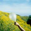 marélo (stereomind) Tags: blue yellow azul finland balloons kodak balão hasselblad amarelo portra suomenlinna 500cm 400vc