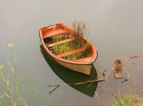 Un jardin flotante.