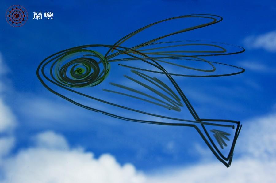我的飛魚夢