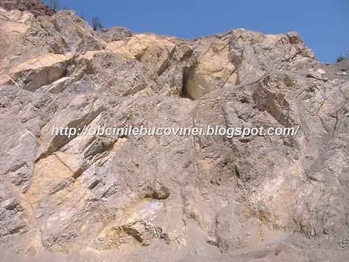 Rezervatia geologica de calcare  triasice Paraul Cailor  (2)