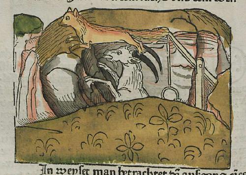 vulpes et hircus