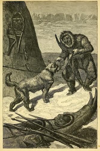 Fur et Canis