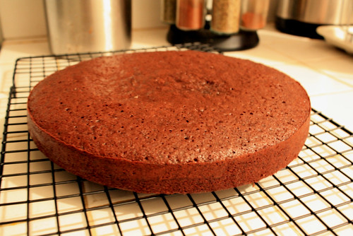 Chocolate Genoise Cake