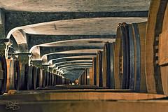 Bordeaux Wine Cave Cellar (DiGitALGoLD) Tags: france vineyard vines nikon tour wine barrels country bordeaux 85mm smith lafitte cave nikkor f18 chateau cellar grape d3 haut
