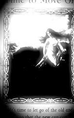 cards lie (DeeAshley) Tags: life california ca travel viaje vacation bw usa white black monochrome sepia photography weird photo interesting pretty texas different foto unitedstates random unique tx bonito odd viajes journey vida fotos bonita diferente vacations interesante vaccaciones eeuu negroyblanco fotografia gogoloopie deeashley extrano