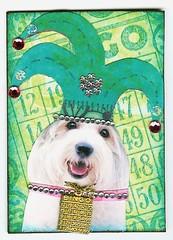ATC - And Bingo Was His Name-O ~Available~ (Nostalgic Collage) Tags: dog jester bingo whimsical atcvintagecollage
