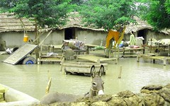 Pakistan floods: Flooded homes in Southern Punjab